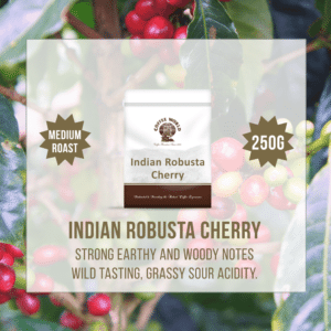 Indian Robusta Cherry AA Single Origin 250g Coffee Beans - by Coffee World